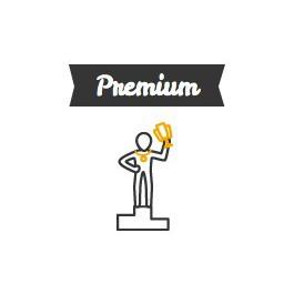 Premium : repasser le permis après perte des points